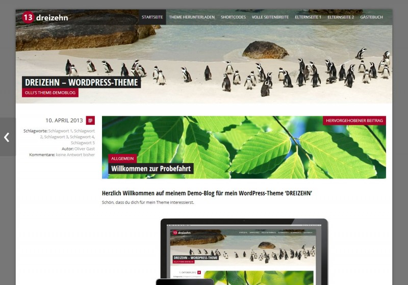 WordPress Theme 'DREIZEHN'