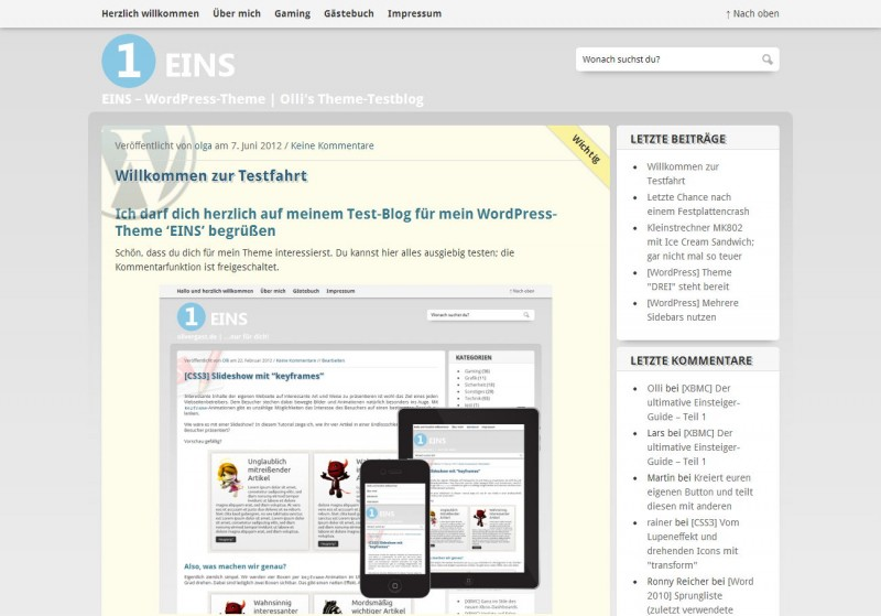 WordPress Theme 'EINS'